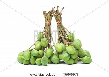 Wild tiny mangoes / Mangifera coloneura Kurz
