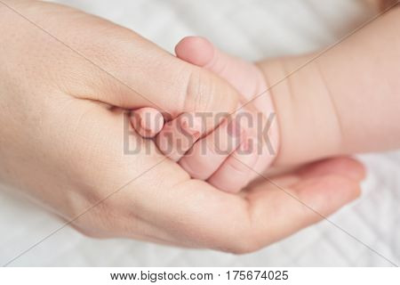 A newborn baby holding his mother's hand