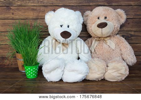 Two teddy bears sitting on a wooden brown background with green grass in a wooden bucket and a small green bucket