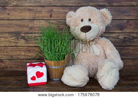Brown teddy bear with bow on neck sitting on wooden brown background with green grass in small wooden bucket and gift