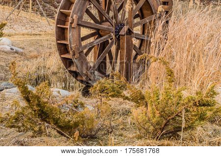Wooden water wheel in a city woodland park surrounded by tall winter wheat with a wooden fence and small evergreen plant in the foreground