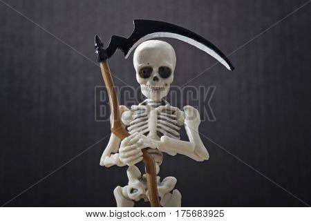 A close-up portrait of a skeleton holding scythe