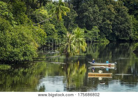 Fishing Boats On A Jungle River