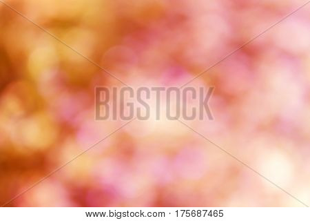 Orange And Pink Bokeh  In Wonderful Romantic Mood Valentine Background