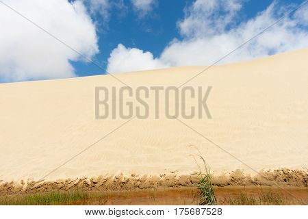 Te Paki Sand Dunes enormous white dunes a favorite tourist attraction and fun place Northland New Zealand