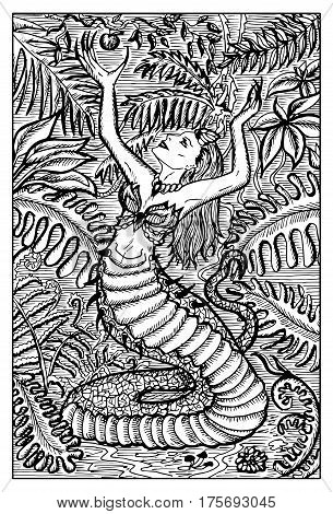 Echinda, half woman, half serpent. Hand drawn vector illustration. Engraved line art drawing, black and white doodle. See all fantasy collection in my portfolio set