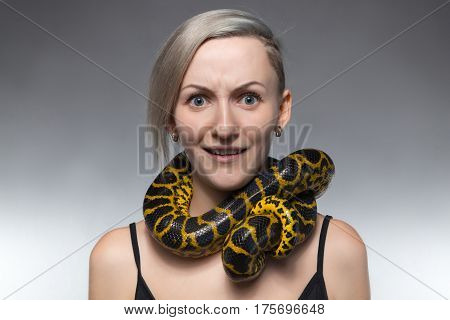Scared woman with anaconda on her neck on gray background