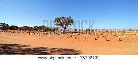 Desert Camp in Namib near Dune 45, Africa