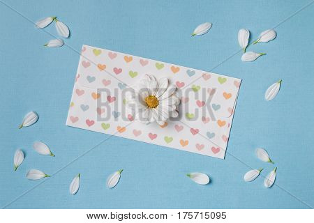 Spring top view composition: scattered petals around white flower with yellow heart white envelope with pattern of hearts. Sky blue background with copy space for text. Flat lay.