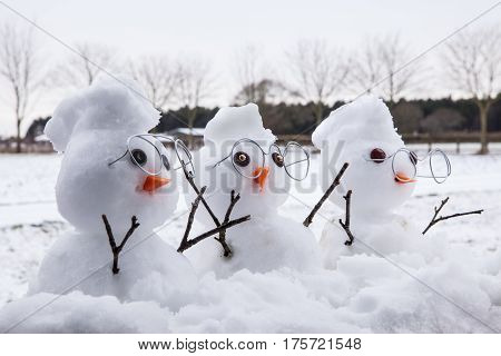 Three cute snowman characters with reading glasses and snow mohican hair cuts. Snow fallen all around at winter time