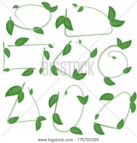 Set of ecological leaf frames on white background. For use as logos on cards in printing posters invitations web design and other purposes.