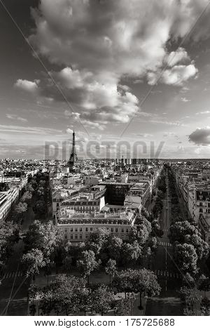 The Eiffel Tower and tree-lined Paris avenues with Haussmannian buildings (Avenue d'Iena and Avenue Kleber). Black & White. France