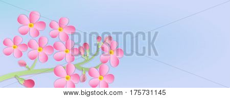 Banner With A Branch Of Cherry Blossoms With Paper Cut. Paper Art Style.  Flowers On A Blue Backgrou