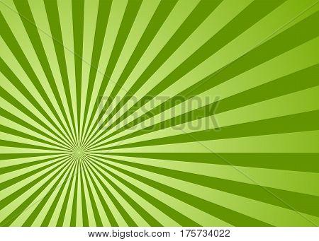Sun rays green, vector illustration. Vector background sun rays