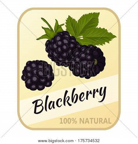 Vintage label with blackberry isolated on white background in simple cartoon style. Vector illustration. Berries Collection.
