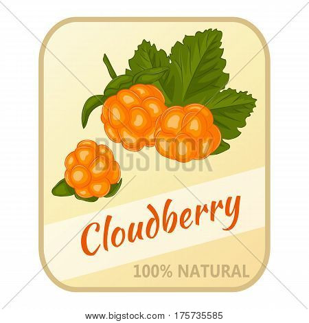 Vintage label with cloudberry isolated on white background in simple cartoon style. Vector illustration. Berries Collection.