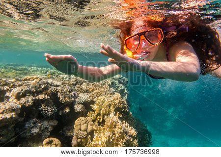 Girl in swimming mask dive in Red sea near coral reef, underwater shoot