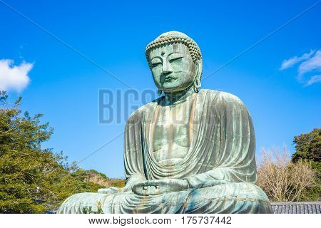 The Giant Buddha or Daibutsu in Kamakura Japan.