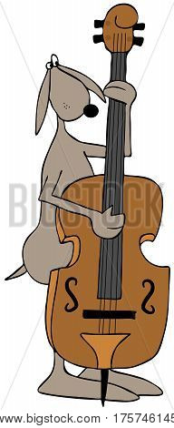 Illustration of a brown dog playing a double bass fiddle.