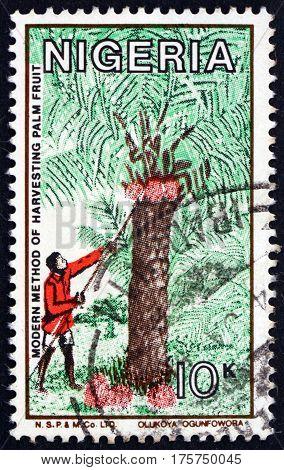 NIGERIA - CIRCA 1986: a stamp printed in Nigeria shows Modern method of harvesting palm fruit circa 1986