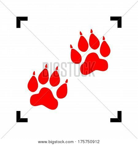 Animal Tracks sign. Vector. Red icon inside black focus corners on white background. Isolated.