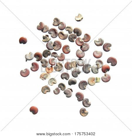 Seeds of marsh mallow (Althaea officinalis) isolated on white background