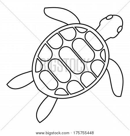 Tortoise icon. Outline illustration of tortoise vector icon for web