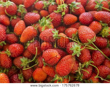 Red strawberries. Background from fresh strawberries, Strawberries at market. Healthy strawberries.(selective focus)