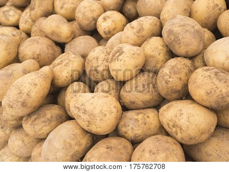 Fresh potatoes in the market. Yellow potatoes. Potatoes background. Vegetable Potatoes. (Selective background)