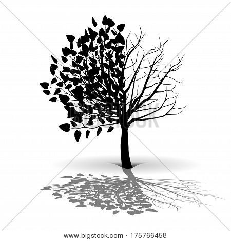 Illustration silhouette of a tree on a white background.