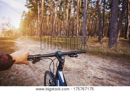 man cyclist rides in the forest on a bike. first-person view
