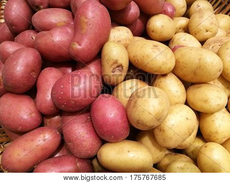 Fresh organic potato and sweet potato stand out among many potato background in supermarket. Heap of potato root. Close-up potatoes texture