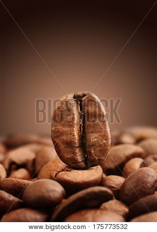 Closeup coffee bean on brown background .