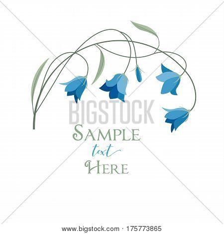 Vector illustration blue bell-shaped bloom, summer flower Campanula