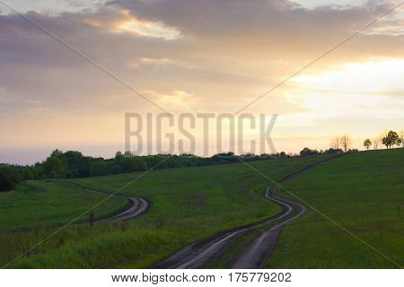 Two dirt roads among meadows with bushes and trees in the distance at sunset