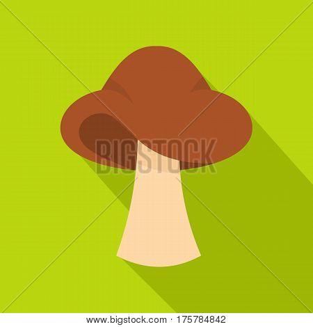 Small mushroom icon. Flat illustration of small mushroom vector icon for web