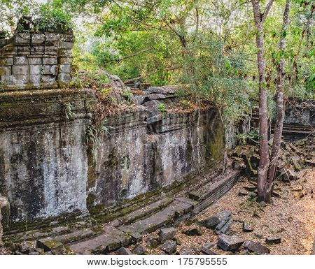 Temple wall of Prasat Beng Mealea in Angkor Complex, Siem Reap, Cambodia. Old trees and brush growing amidst towers and many stones lying in great heaps. Ancient Khmer architecture, World Heritage