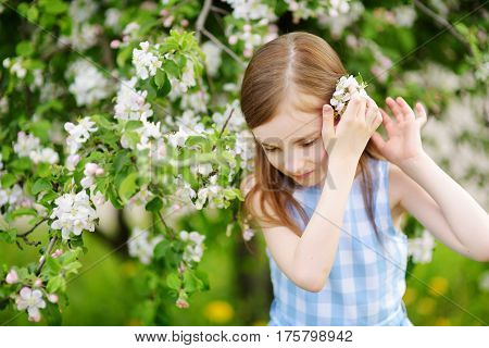 Adorable Little Girl In Blooming Apple Tree Garden On Beautiful Spring Day