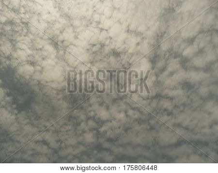 Clouds seen after a storm in san Jose when looking up