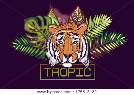Tropic text. Card with a tropical design. The head of a tiger on a background of leaves of tropical trees:Monstera,Palm,Hibiscus. Portrait of a wild tiger predator.Template for poster, banner prints.