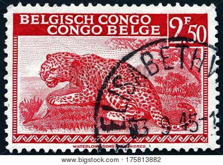 BELGIAN CONGO - CIRCA 1942: a stamp printed in Belgian Congo shows Leopard, Panthera Pardus, Big Cat, circa 1942