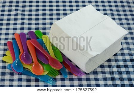 Paper napkins and plastic flatware for picnic party