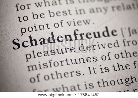 Fake Dictionary Dictionary definition of the word schadenfreude.