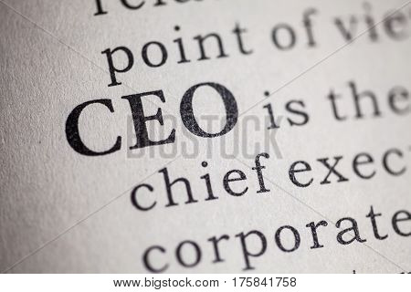 Fake Dictionary Dictionary definition of the word CEO. Chief executive officer