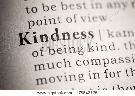Fake Dictionary Dictionary definition of the kindness.