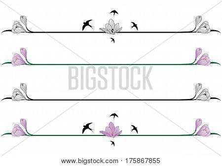 set of vector spring borders with flowers of crocus and swallows