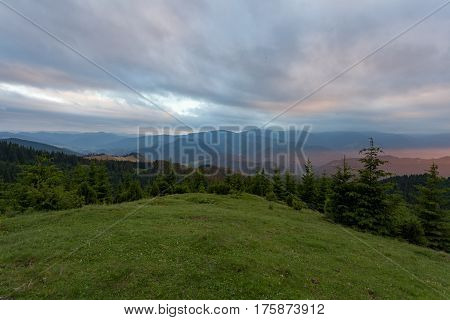 Summer Carpathian Mountains in Ukraine. Green lug and a dense forest.
