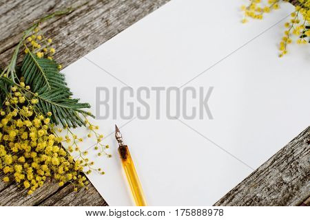 White paper mock up with yellow flowers mimosas and vintage pen ink on grey wooden background. Overhead view. Flat lay, top view, moke up
