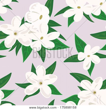 Vector seamless pattern with jasmine flowers. Design for herbal tea, health care products, natural cosmetics, perfumery, essential oil. For postcard background, wrapping paper, prints, textile