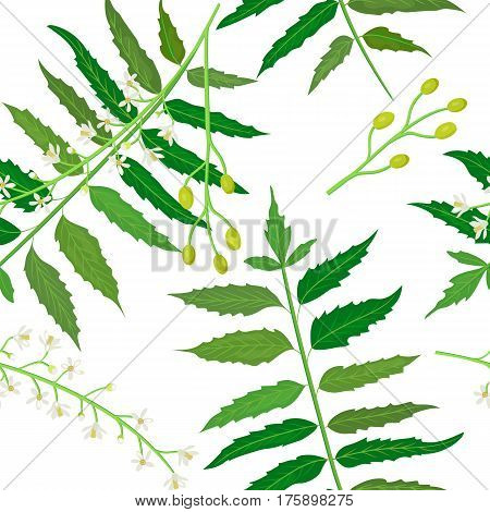 Neem or nimtree. Ayurvedic Herb. Health and Nature. medicinal plant. seamless pattern vector. Design for natural cosmetics, health care products, aromatherapy. For prints, poster, wrapping, design